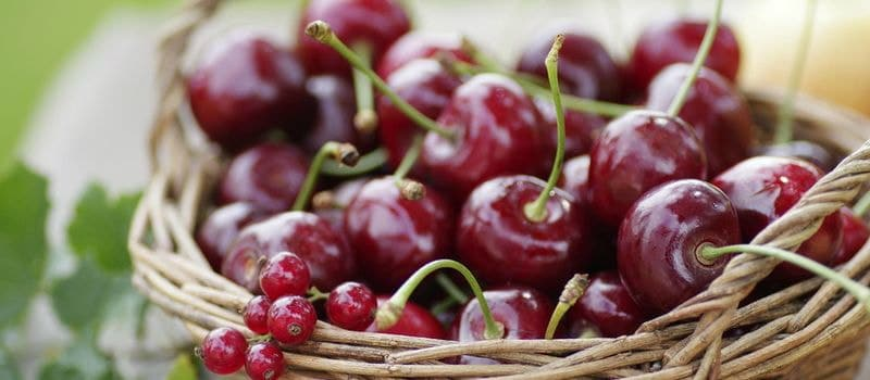 8 самых полезных ягод