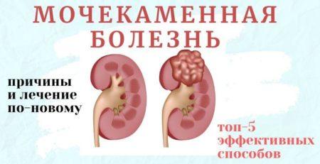 Международная школа здоровья Акрида 1